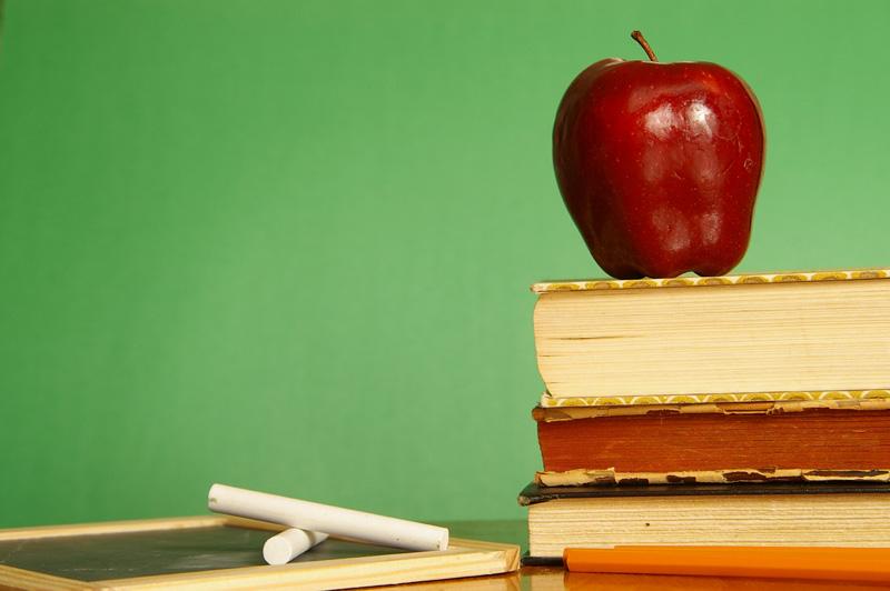 Teacher Feature: Shelly Galusha