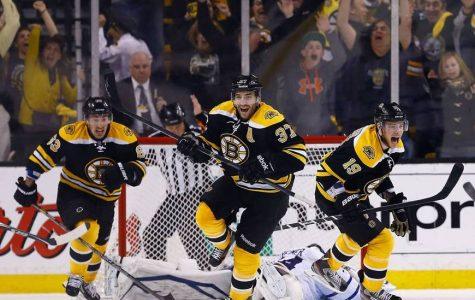Boston Bruins 2016-2017 Season Preview