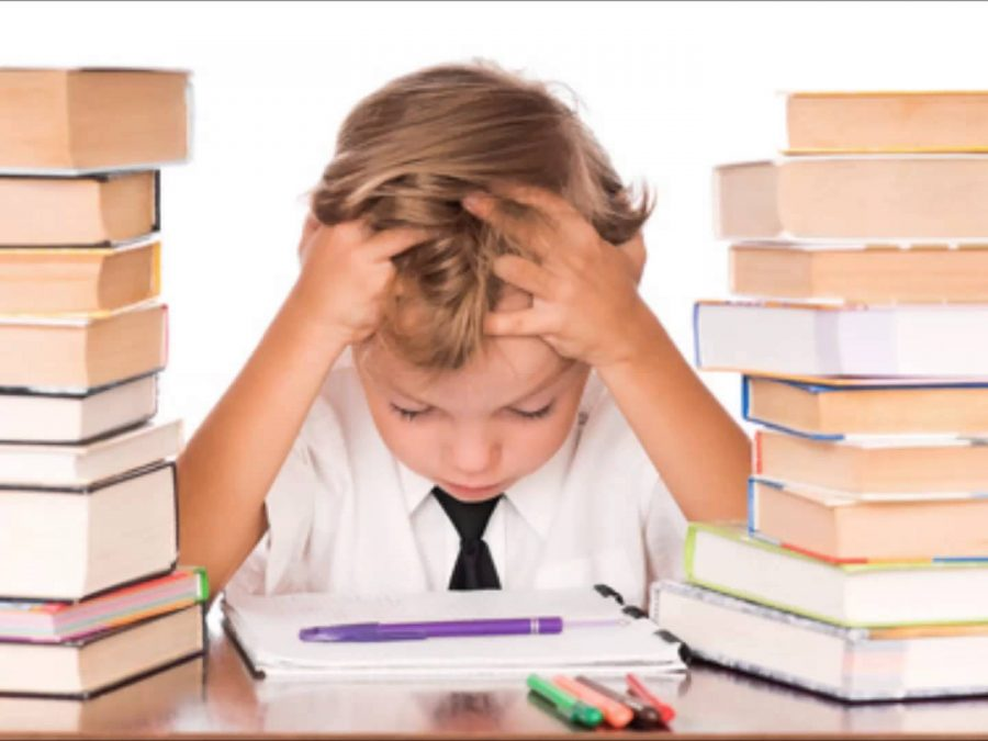 Opinion: Why Homework is Not the Answer