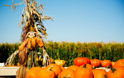 Fall Festivities Taking Place in New England Despite the Pandemic